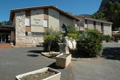 Musée de Tautavel